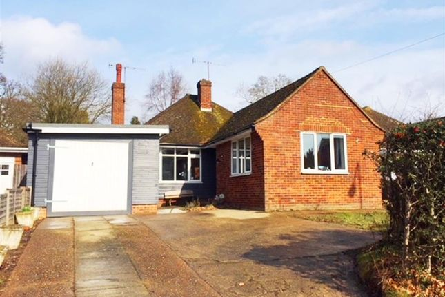 Thumbnail Bungalow to rent in Turkey Road, Bexhill-On-Sea