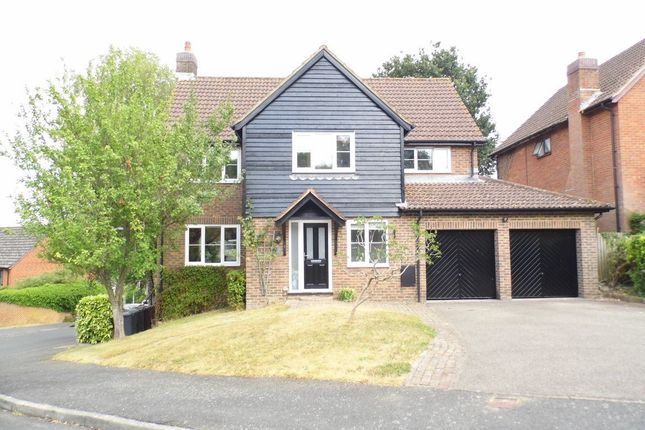 Thumbnail Detached house to rent in Castle Rise, Ridgewood, Uckfield
