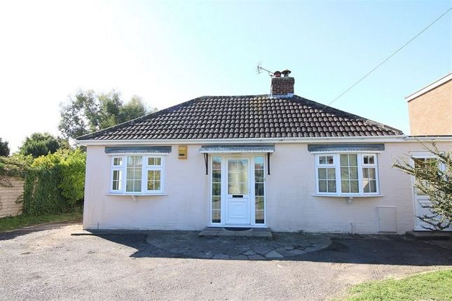 Thumbnail Bungalow to rent in Stocks Lane, East Wittering, Chichester