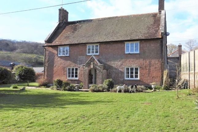 Thumbnail Country house to rent in Winterborne Houghton, Blandford Forum