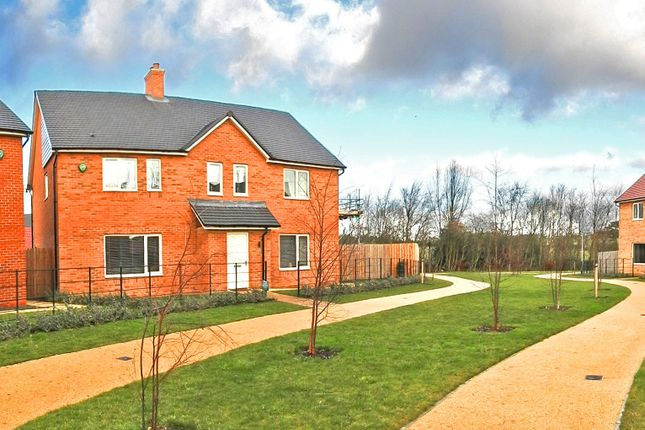 Thumbnail Property to rent in Eden Walk, St Mary Park, Morpeth