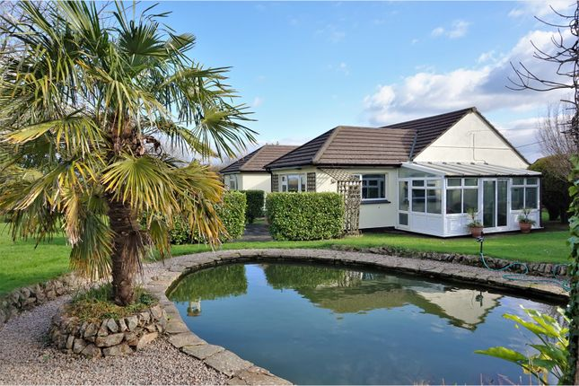 Thumbnail Bungalow for sale in Canonstown, Hayle