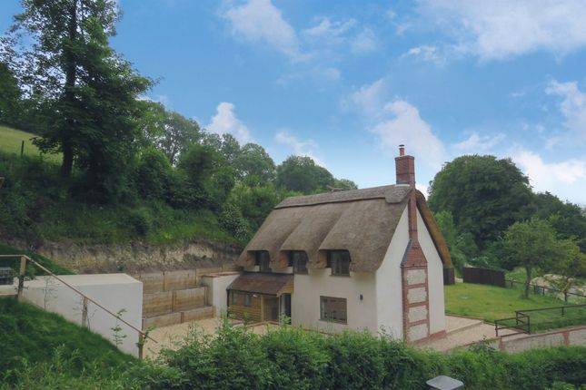 Thumbnail Detached house for sale in Chalky Path, Winterborne Stickland, Blandford Forum