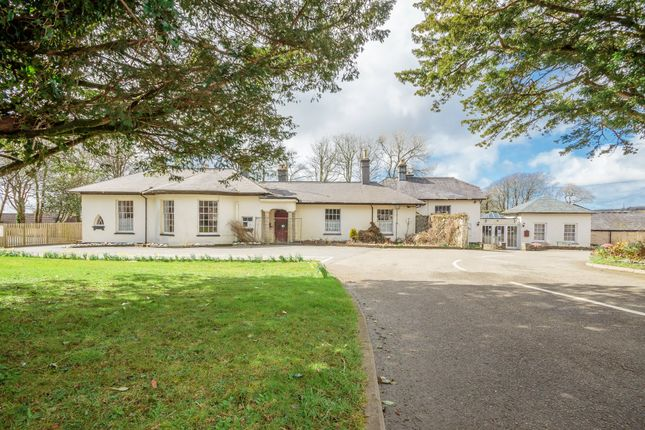 Thumbnail Detached bungalow for sale in Camelford