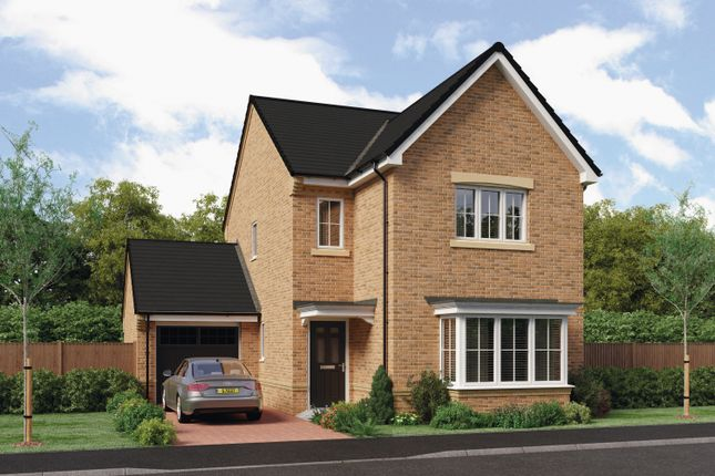 """Thumbnail Detached house for sale in """"The Esk"""" At Ladyburn Way, Hadston, Morpeth NE65, Hadston, Morpeth,"""
