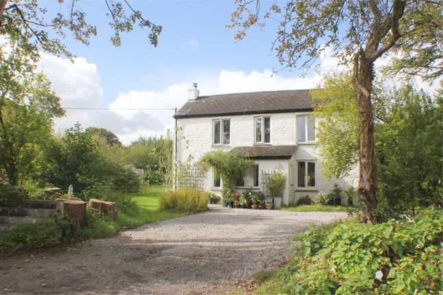 Thumbnail Detached house for sale in Tresamble, Gwennap, Redruth