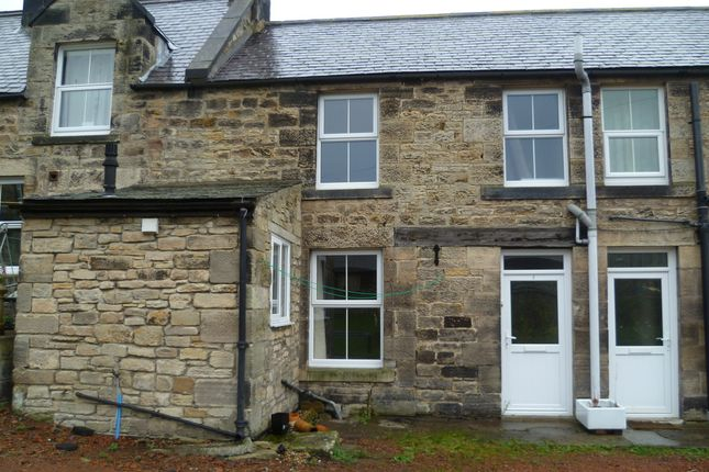 Thumbnail Cottage to rent in Stephenson Terrace Cottages, Rothbury, Morpeth