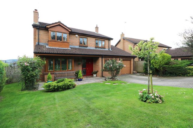 Thumbnail Detached house for sale in Barnfield Close, Llangybi, Usk