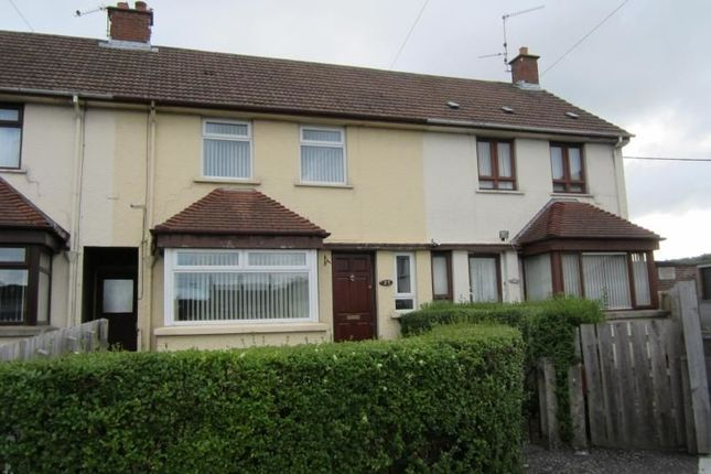Thumbnail Property to rent in Dill Avenue, Lisburn