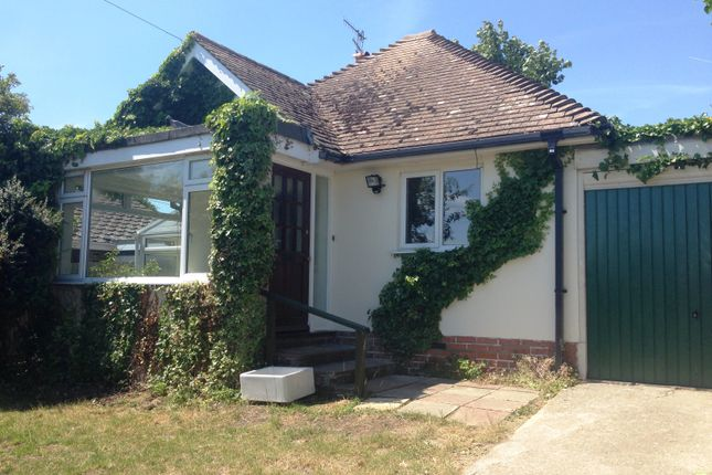 Thumbnail Detached bungalow to rent in Northwood Avenue, Saltdean