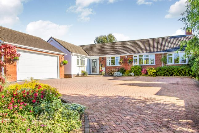 Thumbnail Detached bungalow for sale in Station Road, Elmesthorpe, Leicester