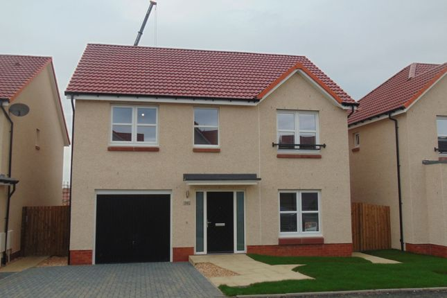 Thumbnail Detached house to rent in Cowdenhead Crescent, Armadale, Bathgate