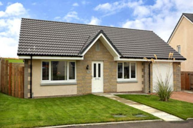 Thumbnail Bungalow to rent in Homefarm Park, Rothienorman