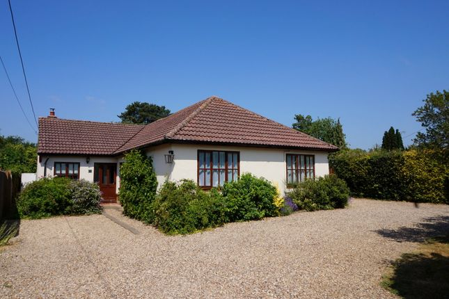 Thumbnail Detached bungalow for sale in Askins Road, East Bergholt, Colchester