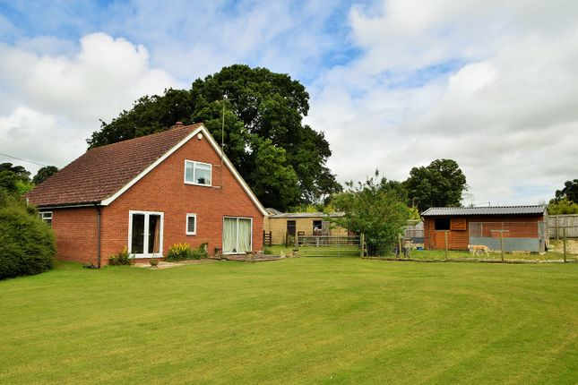 Thumbnail Equestrian property for sale in Woodland St Mary, Lambourn