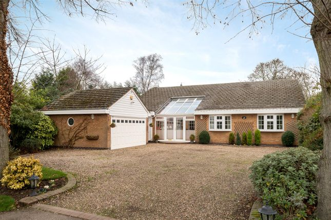 Thumbnail Detached bungalow for sale in The Ridings, Rothley, Leicester