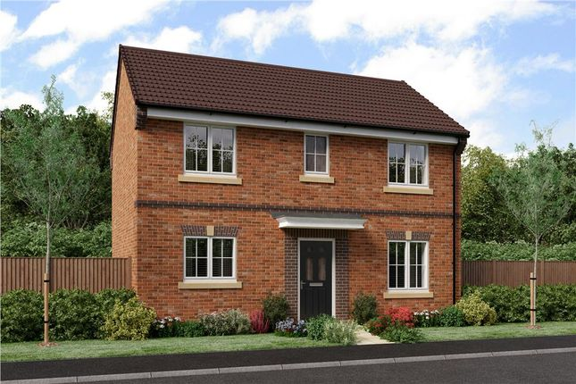 """Thumbnail Detached house for sale in """"Darwin"""" at Blackburn"""