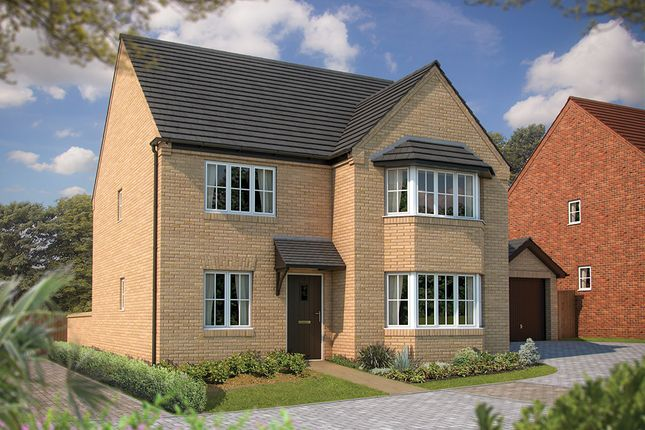 "Thumbnail Detached house for sale in ""The Oxford"" at Irthlingborough Road, Wellingborough"