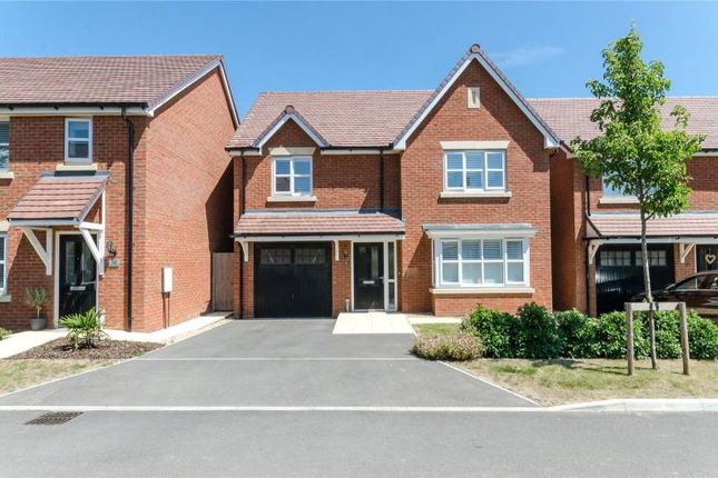 Thumbnail Detached house for sale in Robin Road, Goring By Sea, Worthing