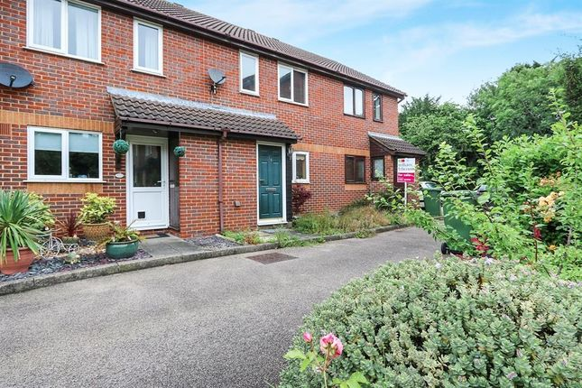 Thumbnail Property to rent in Ellison Close, Attleborough