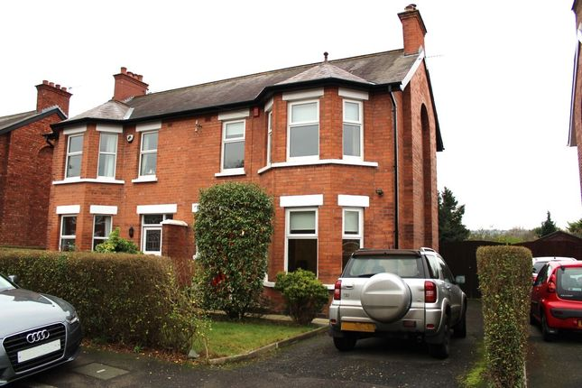 Thumbnail Semi-detached house to rent in Sandhill Gardens, Belfast