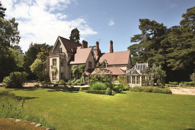 Thumbnail Detached house to rent in Windlesham, Surrey