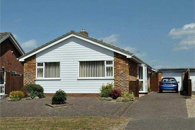 Thumbnail Detached bungalow to rent in Norfolk Avenue, Newmarket