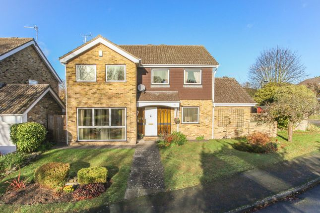 Thumbnail Detached house for sale in Beechwood Close, Exning, Newmarket