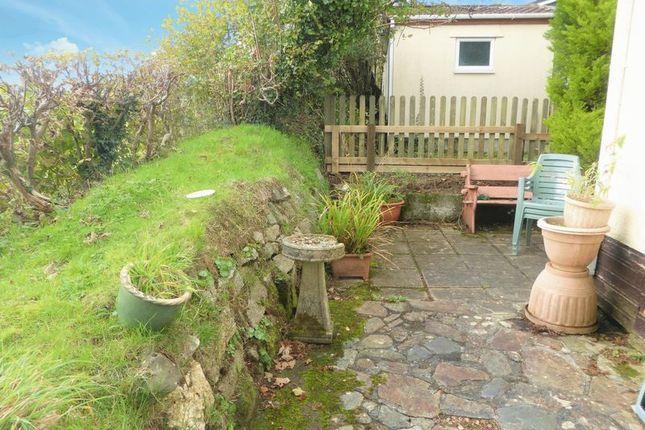 Rear Garden of Moorshop, Tavistock PL19