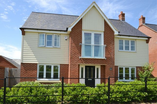 Thumbnail Detached house to rent in Lannesbury Crescent, St Neots, Cambridgeshire