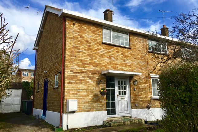 Thumbnail Semi-detached house to rent in Graham Road, Dunstable