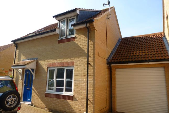 Thumbnail Detached house to rent in Pound Meadow Court, Mildenhall, Bury St. Edmunds