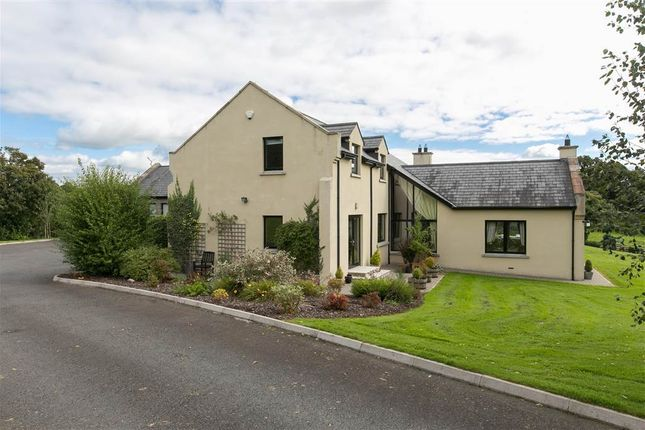 Thumbnail Detached house for sale in 8, Dublinhill Lane, Dromore