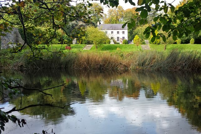 Thumbnail Detached house for sale in Marshfield House, Mill Lane, Leixlip, Dublin, Leinster, Ireland