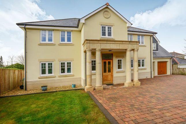 Thumbnail Detached house for sale in The Crescent, Crapstone, Yelverton, Devon