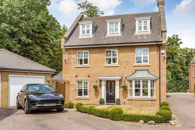Thumbnail Detached house for sale in Douglas Close, The Avenue