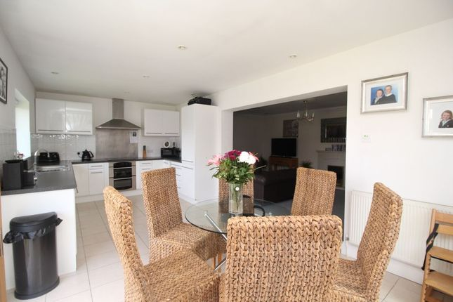 Thumbnail Bungalow to rent in Stour Close, Worthing