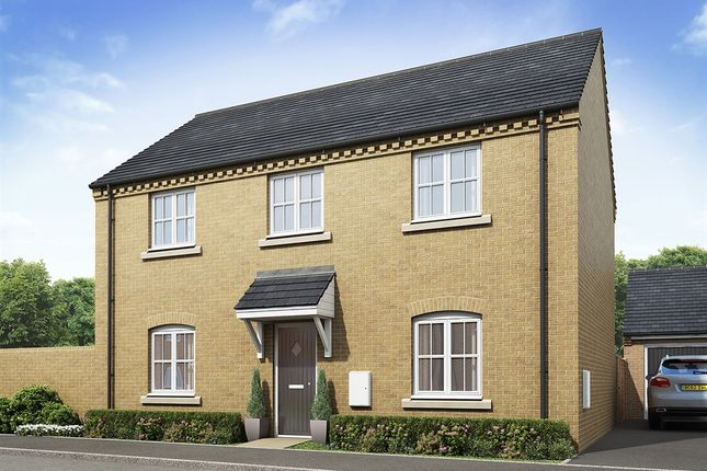 "Thumbnail Detached house for sale in ""The Waddington"" at Lavender Way, Newark"