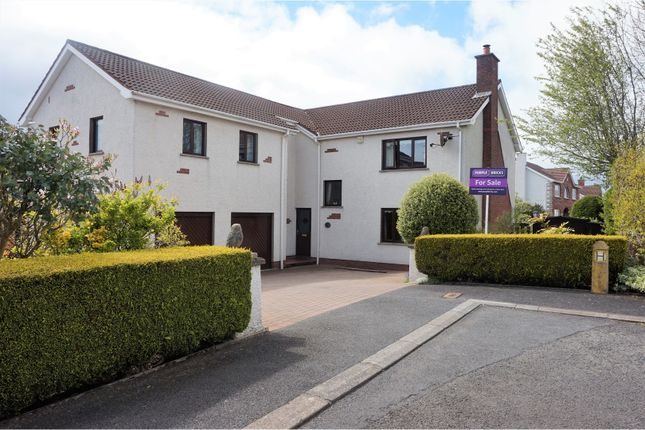 Thumbnail Detached house for sale in Bradford Gardens, Carrickfergus
