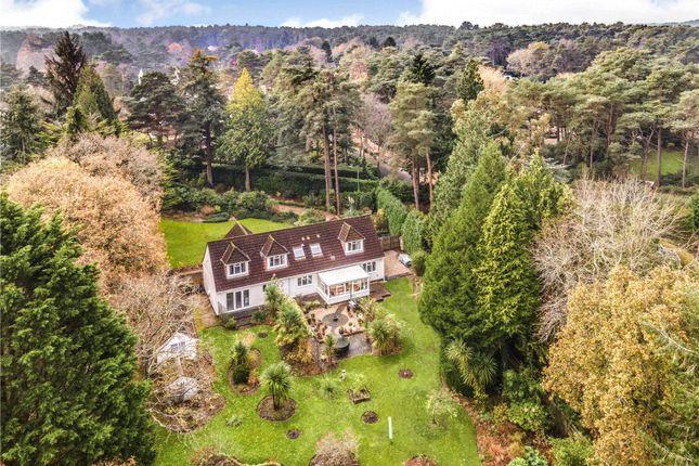 Thumbnail Detached house for sale in Avon Castle Drive, Avon Castle, Ringwood, Hampshire