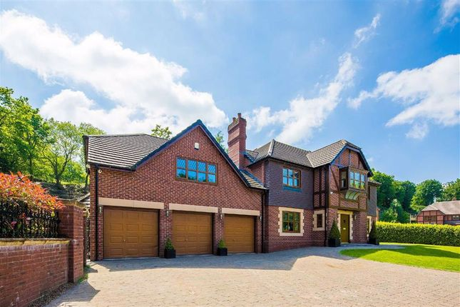 Thumbnail Detached house for sale in Abbotsbury Lodge, Mowson Hollow, Worrall
