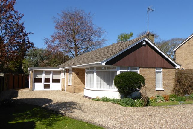 Thumbnail Bungalow to rent in Vicarage Road, Oakham