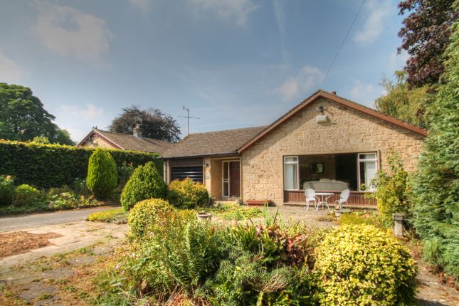 Thumbnail Bungalow for sale in Greenhills, Ashford Road, Bakewell