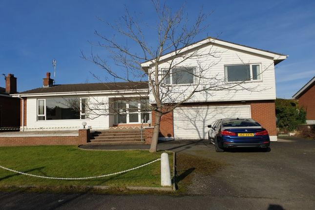 Thumbnail Detached house for sale in Deanfield, Bangor