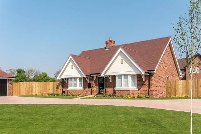 "Thumbnail Bungalow for sale in ""The Bramley"" at Amlets Lane, Cranleigh"