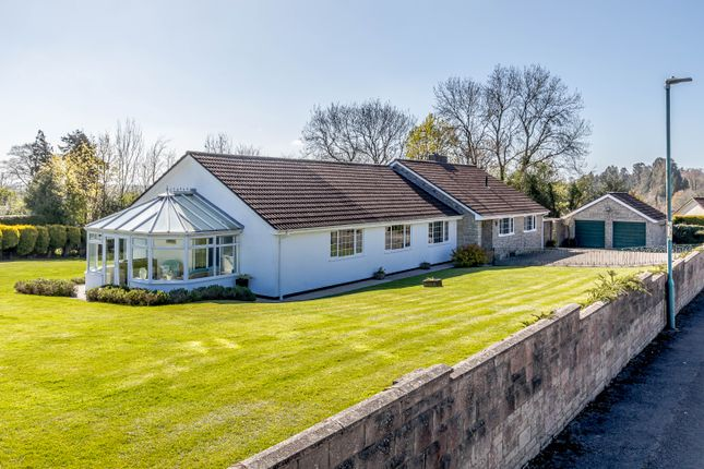 Thumbnail Detached bungalow for sale in Pentwyn Park, Penallt, Monmouth