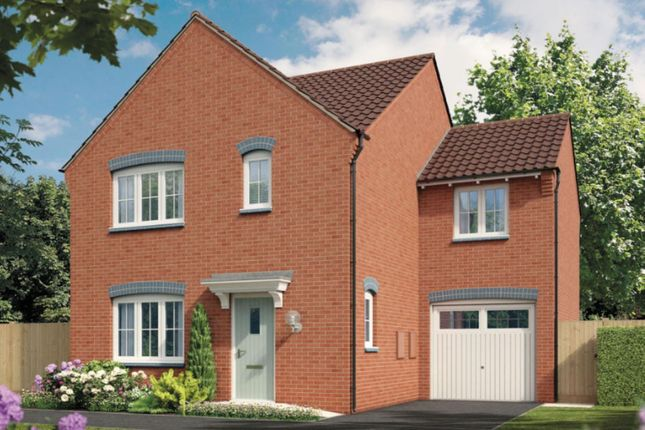 Thumbnail Detached house for sale in Robins Wood Road, Nottingham