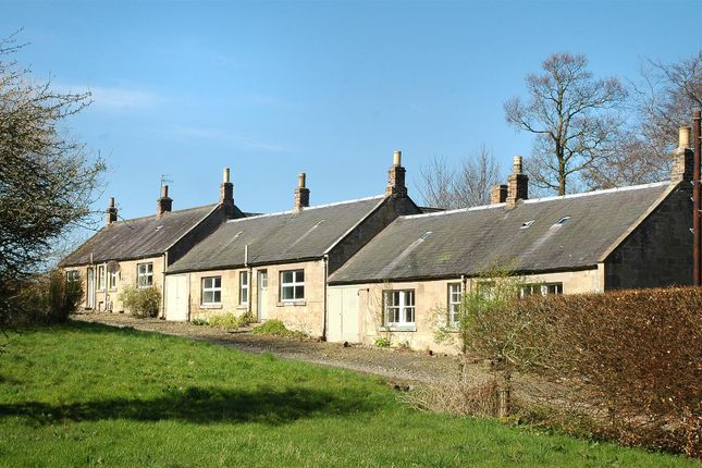 Thumbnail Detached house for sale in Coldstream
