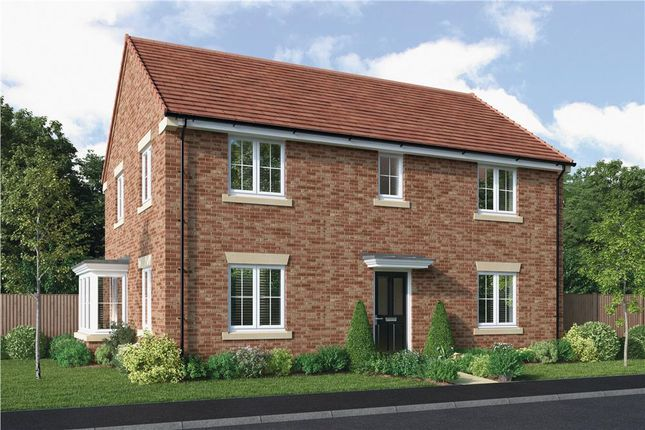 """Thumbnail Detached house for sale in """"The Baywood"""" at Elm Avenue, Pelton, Chester Le Street"""