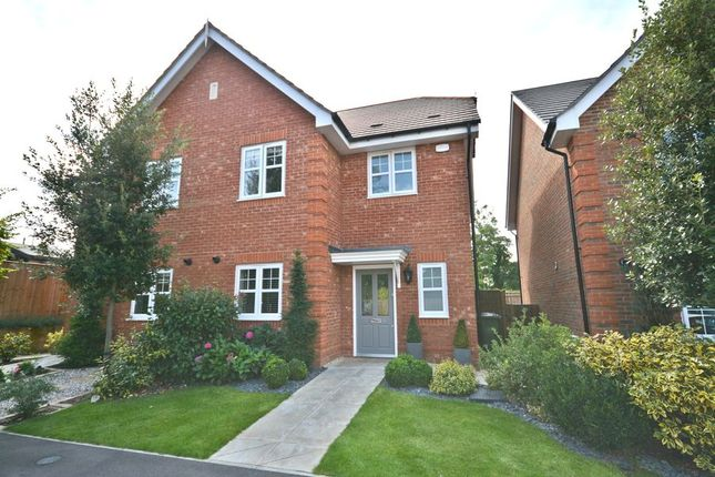 Thumbnail Semi-detached house to rent in Elen Place, Bracknell